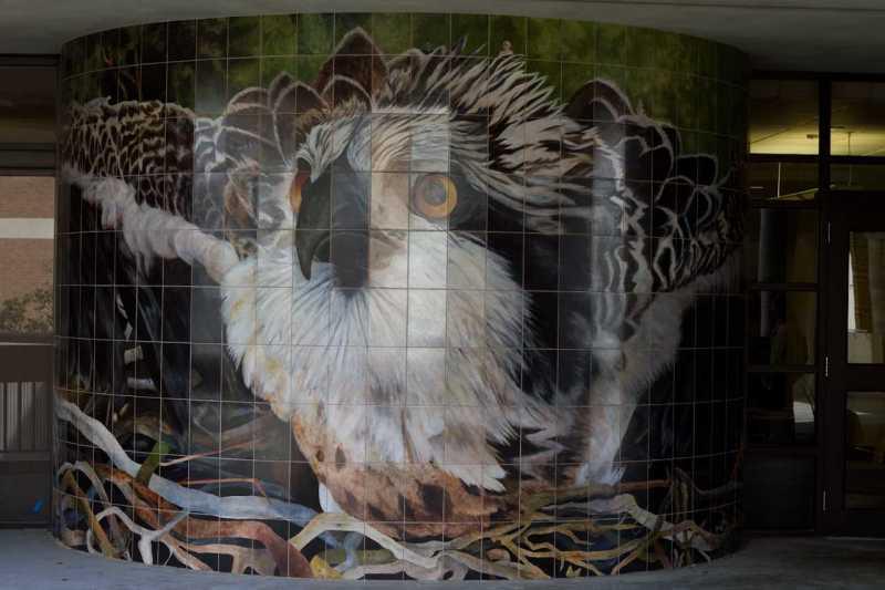 murals_RandyRataj-6