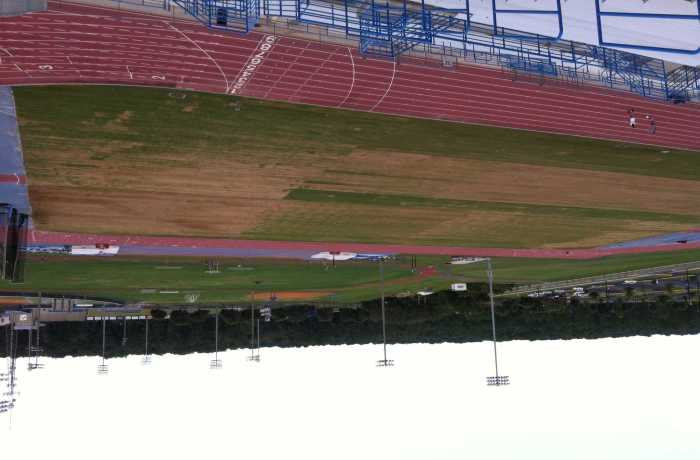 New grass grew in patches during the renovations to the soccer field. Photo by Camille Shaw