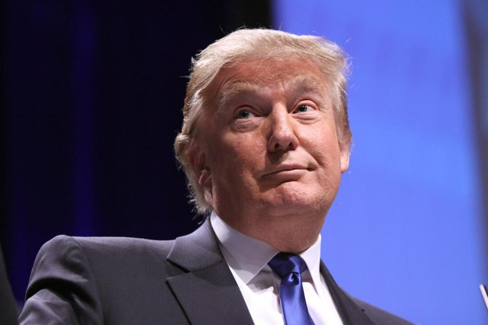 Donald Trump won the 2016 presidential election.