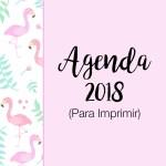 AGENDA / PLANNER 2018 PARA IMPRIMIR