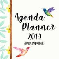 AGENDA / PLANNER 2019 PARA IMPRIMIR