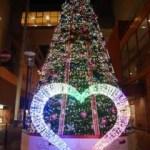 福井のクリスマスイルミネーションおすすめ☆