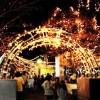 徳島のクリスマスイルミネーションおすすめスポット☆