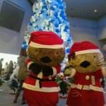 三重のクリスマスイベントおすすめ☆