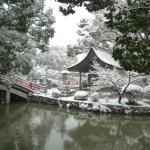 大寒波で雪に包まれた太宰府天満宮や熊本城の美しい写真!