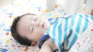お昼寝中の米太郎