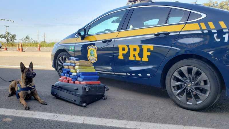 DF: PRF apreende 27 kg de maconha em bagageiro de ônibus