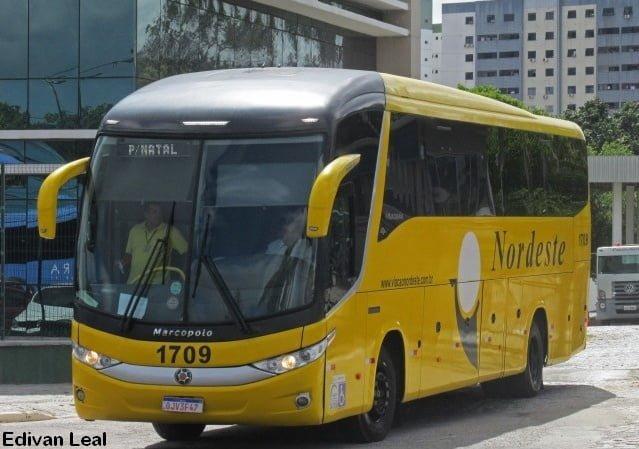 Viação Nordeste anuncia retomada de linhas e novos horários