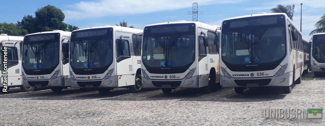 CE: Empresa Vitória renova frota com 20 ônibus novos