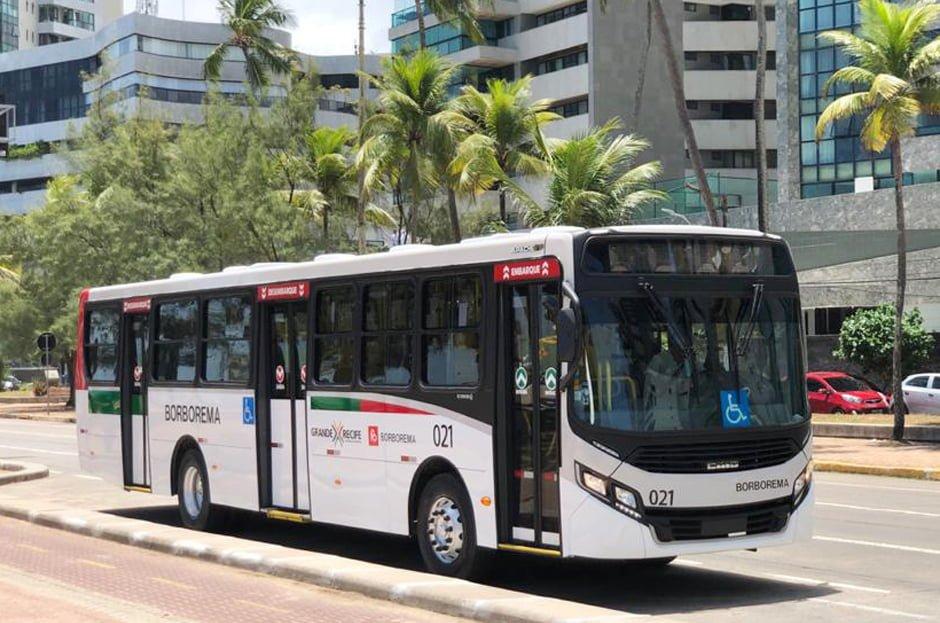 Grupo Borborema adquire ônibus da Caio para operar no Sistema Grande Recife