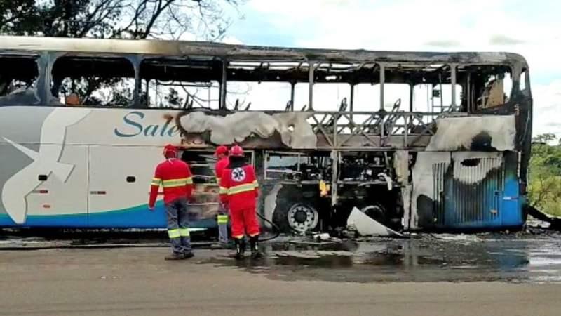 GO: Ônibus da Satélite Norte pega fogo na BR-060 em Anápolis nesta terça-feira
