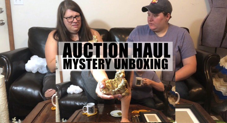 Auction Haul & Mystery Unboxing Video