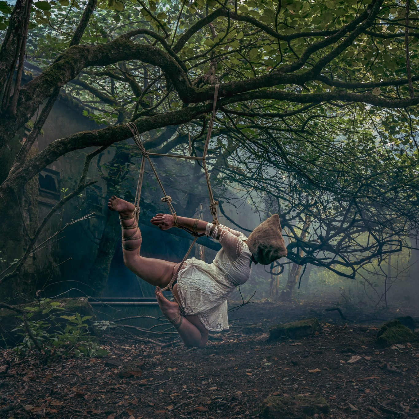 woman suspended with shibari rope for unicorn hunting blog