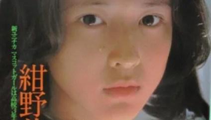 紺野美沙子の画像