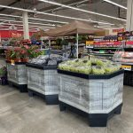 Grocery Outlet Bargain Markets In-Store Orchard Bins With Green And Black Grapes Sitting On Top Of Fruit Bins With Price At The Top And House Plants Sitting On A Bin In The Background
