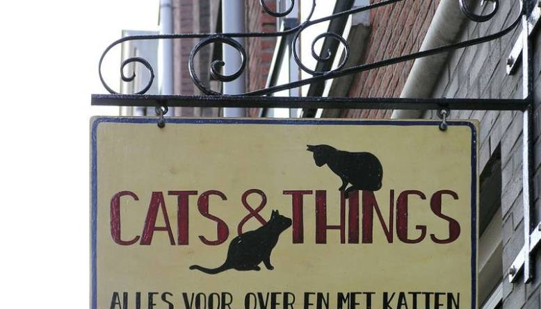 Cats and Things, Amsterdam