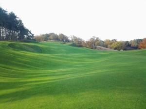 Golfbanen aanleggen