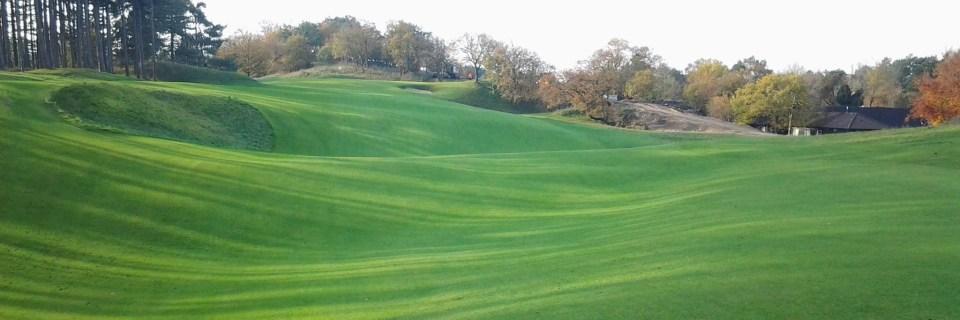 Uniekgraszoden heeft speciale graszoden voor de Golfbanen
