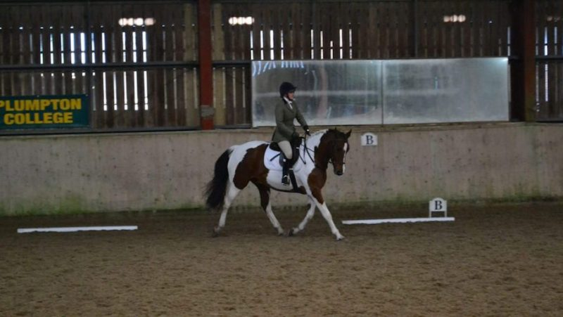 equestrian-competition