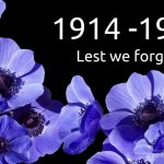 What is the purple poppy and where can you get one?