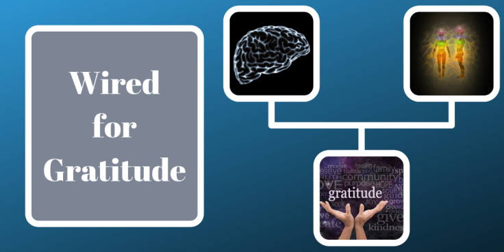 Wired-for-Gratitude