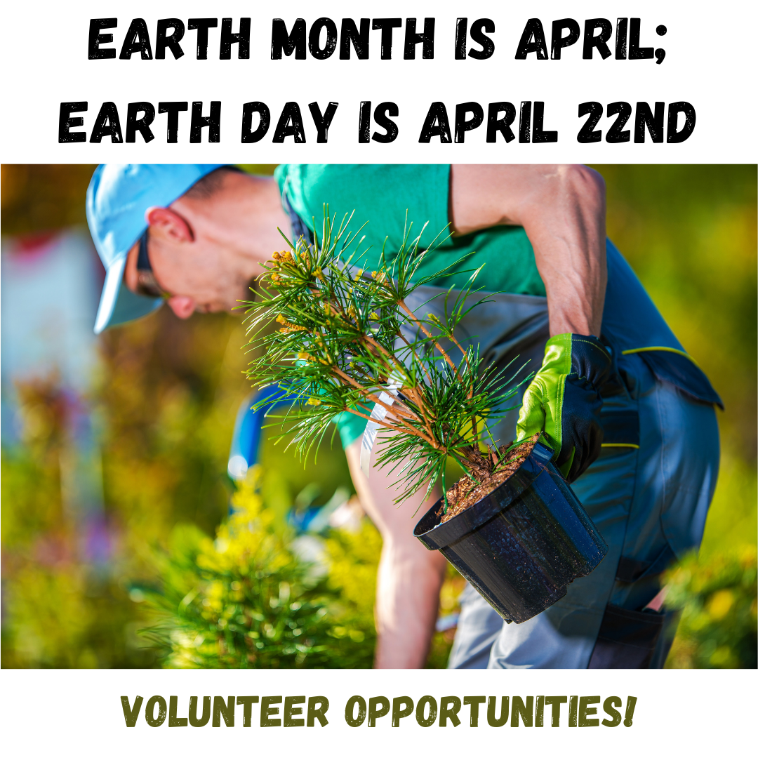 Earth Month planting trees