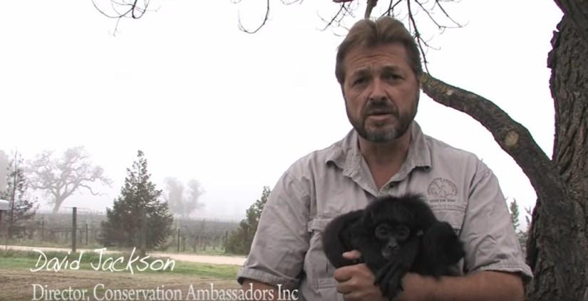 Video Conservation Ambassadors