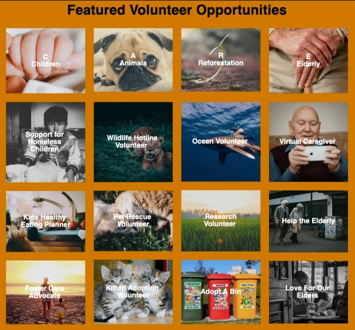 Featured volunteer opportunities