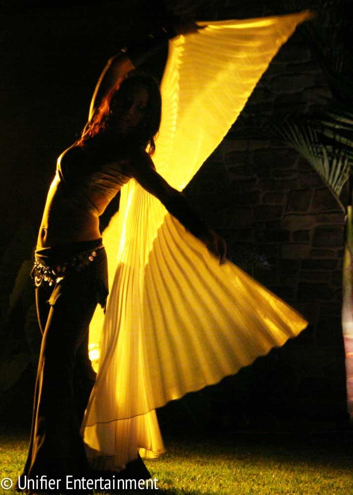 Golden Gossamer Wings