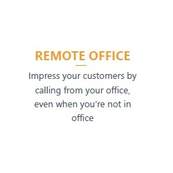 Remote Office