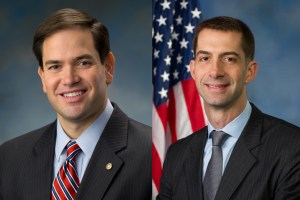 Senators Marco Rubio and Tom Cotton are leading an effort to persuade the new GOP Senate and GOP controlled House to cut the Sequester Cuts in the military budget, so hurtful to America's armed services.