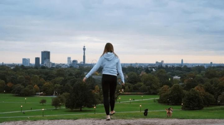 Primrose Hill and Regent's Park