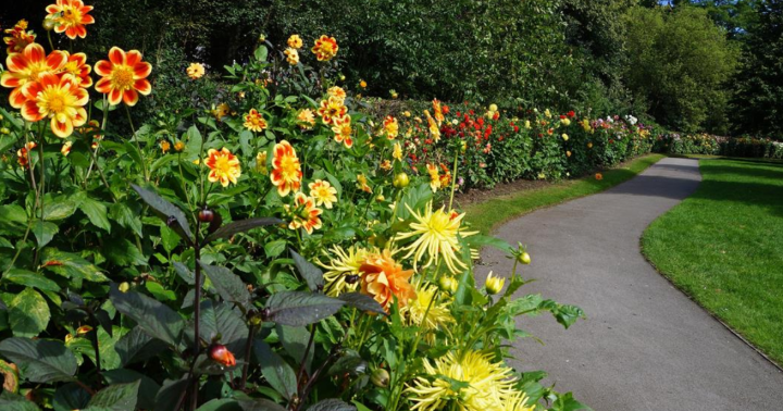 The Arboretum cool things to do nottingham