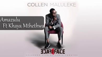 Amazulu by Collen Maluleke and Khaya Mthethwa