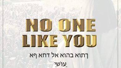 No One Like You by Frank Edward
