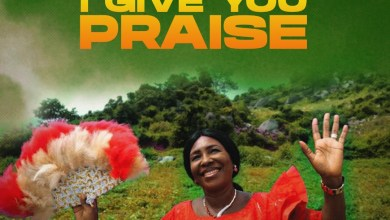 I Give You Praise by Happiness Ibeh