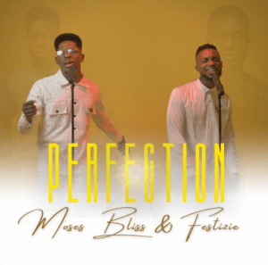 Perfection by Moses Bliss & Festizie