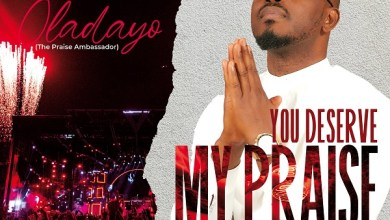 You Deserve My Praise by Oladayo Okeowo