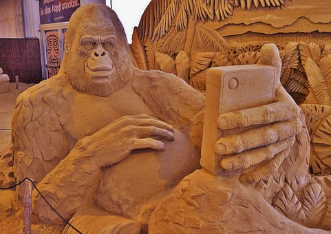 sand-sculpture-- monkey selfie