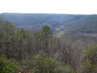 Lookout. Brushy Mountain in the story---Blount Mountain in NW Alabama.