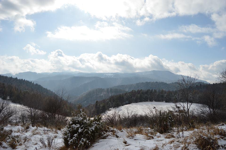 Kto sa chystá v zime na bežky? (Foto: Kristína Minárová)
