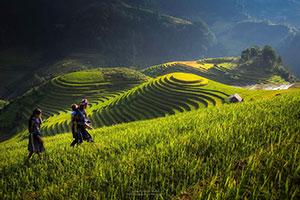 שבוע בווייטנאם- הנופים הציוריים של הצפון