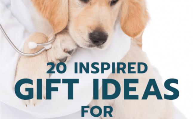 20 Gift Ideas For Veterinarians Unique Gifter