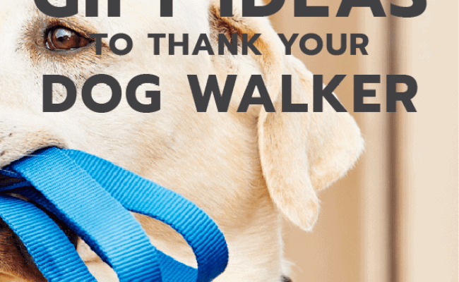 20 Thank You Gift Ideas For Your Dog Walker Unique Gifter