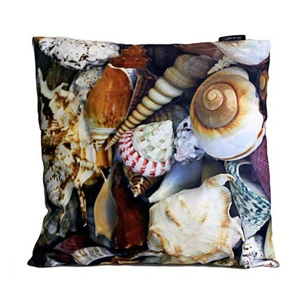 art cushion covers tropical shells
