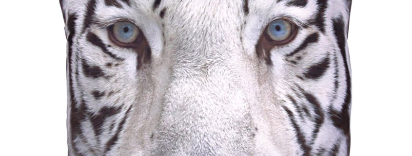 decorative art print snow tiger cushion image