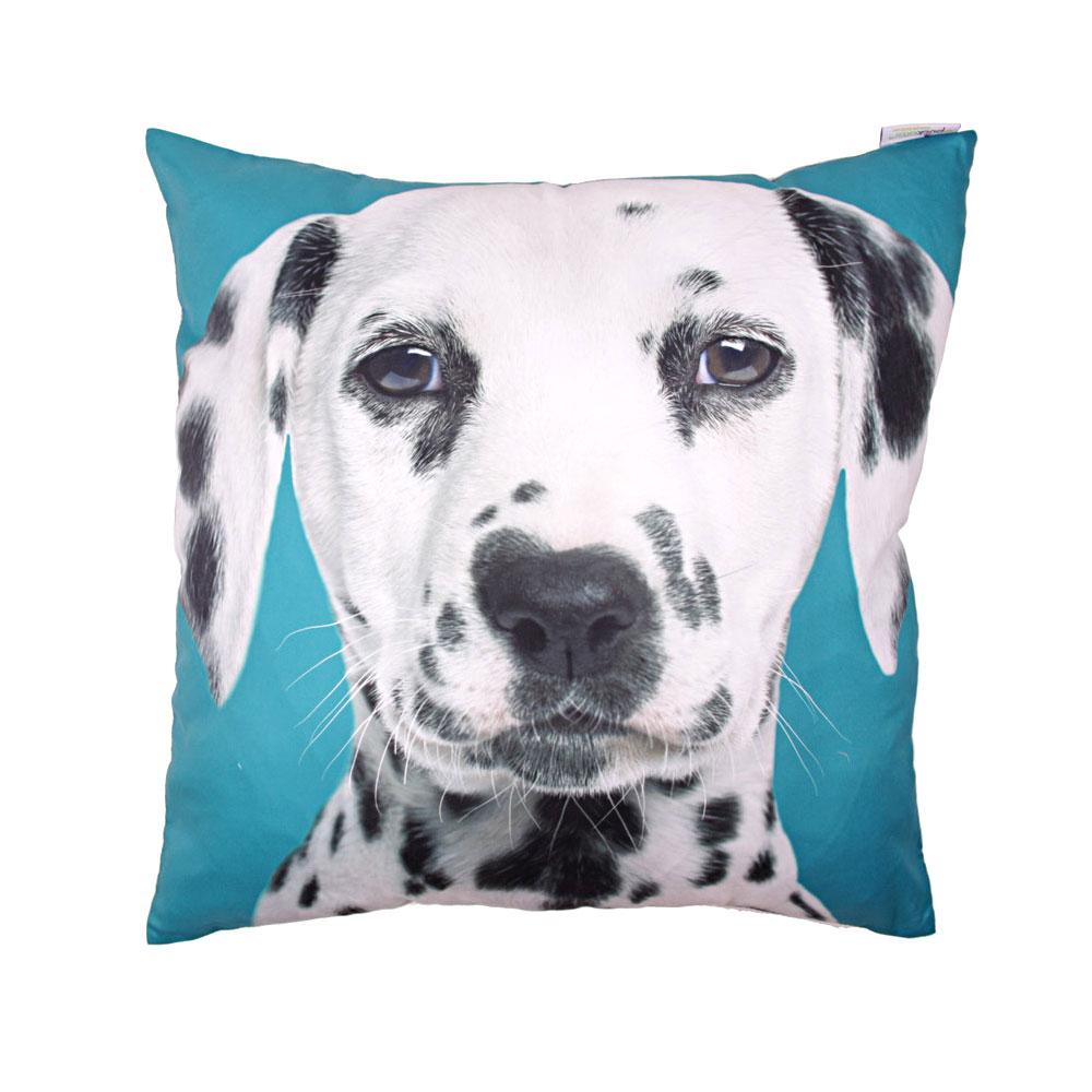 dalmatian cushion