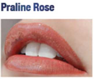 Lip Sense Praline Rose 1362