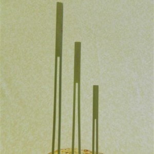 Double Prong Bamboo Skewer/Pick - 3 Sizes