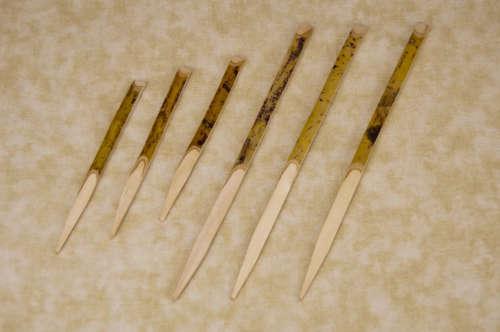 Black Willow Picks - 2 Sizes